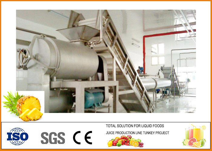 Automatic Dried Preserved Pineapple Processing Plant CFM-B-03-03T